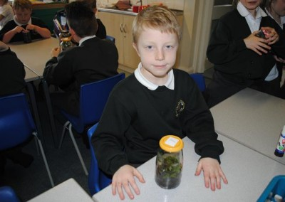 Class 3 Science Plant Growth